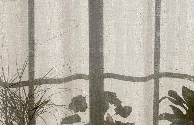 květiny za záclonou