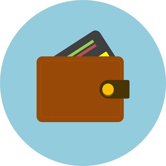 peněženka s kreditkou – ilustrace.jpg